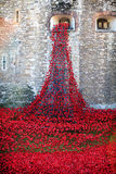 Tower of London Ceramic Poppy Display Royalty Free Stock Photos