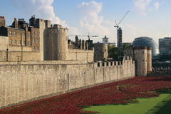 Tower of London. Her Majesty's Royal Palace and Fortress, known as the Tower of London, is a historic castle located on the north bank of the River Thames in Royalty Free Stock Photos