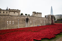 Tower of London Memorial Poppies Royalty Free Stock Photo