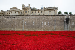 Tower of London Memorial Poppies Royalty Free Stock Photography