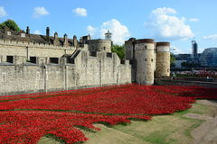 Tower of London Poppies. Blood Swept Lands and Seas of Red is an installation at the Tower of London in the UK. 888,246 ceramic poppies will eventually fully Stock Photo