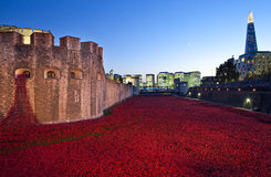 Tower of London and Poppies at Dusk Stock Photography