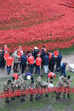 Tower of London with Poppies Stock Photo