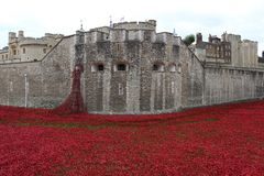 Tower of London and poppy installation. Art installation 'Blood Swept Lands and Seas of Red' at the Tower of London, marking one hundred years since the first Stock Photos