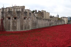 Tower of London and poppy installation. Art installation Blood Swept Lands and Seas of Red at the Tower of London, marking one hundred years since the first full Royalty Free Stock Image