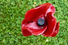 Tower of london poppy Stock Photography