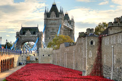 Tower of London with sea of Red Poppies to remember the fallen soldiers of WWI Royalty Free Stock Photography