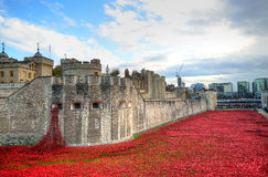 Tower of London with sea of Red Poppies to remember the fallen soldiers of WWI Stock Images
