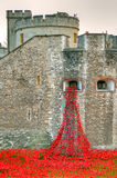 Tower of London with sea of Red Poppies to remember the fallen soldiers of WWI Royalty Free Stock Photos