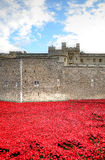 Tower of London with sea of Red Poppies to remember the fallen soldiers of WWI - 30th August 2014 - London, UK Stock Images