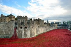 Tower of London with sea of Red Poppies to remember the fallen soldiers of WWI - 30th August 2014 - London, UK Royalty Free Stock Photography