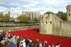 Tower of London with tourists looking at poppies Stock Image