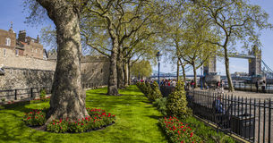 Tower of London and Tower Bridge in London Royalty Free Stock Images