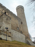 Tower long Herman of old Tallinn. Medieval wall and tower long Herman of old Tallinn Royalty Free Stock Photography