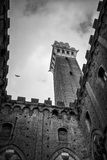 Tower mangia in black&white Stock Image