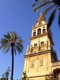 Tower of Mezquita. Cathedral (Cardoba, Spain royalty free stock image