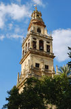 Tower of the Mezquita II Royalty Free Stock Photography