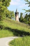 Tower near the vineyard. Beautiful tower on the island of Mainau, Germany Stock Image