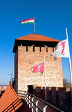 Tower Of The Castle Gyula Royalty Free Stock Photos