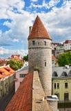 Tower in old tallinn, estonia Stock Photography