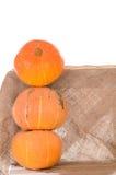 Tower of orange pumpkins Stock Photos