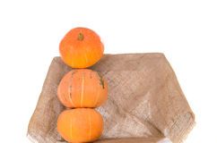 Tower of orange ripe pumpkins Royalty Free Stock Photos