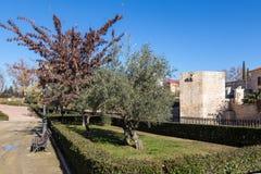 Tower park, olive Spotlight Stock Photography