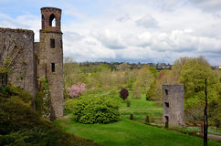 Tower and part of Blarney Castle in Ireland. Tower and Blarney Castle in Ireland Royalty Free Stock Photo
