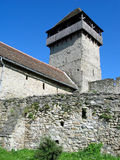 Tower of peasant fortress Drauseni Royalty Free Stock Image