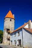 The Tower of Plate in Tallinn Stock Photos