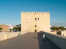 Tower and roman bridge in Cordoba, Spain Royalty Free Stock Images