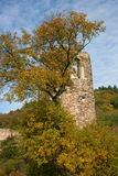 Tower ruin. In the autumnal forest royalty free stock images