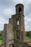 Tower. Ruins of old tower of Blarny castle in Cork, Ireland Stock Photos
