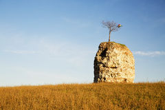 Tower in ruins over a hill Royalty Free Stock Images