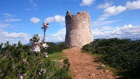 Tower. On Sardenia royalty free stock images