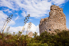 Tower in Sardinia Royalty Free Stock Photos