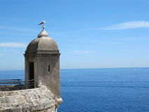The tower and the seagull. The seagull on the tower of fortress in Monte Carlo, Monaco royalty free stock photos