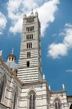 Tower in Siena Royalty Free Stock Image
