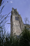 Tower of Sint-Salvator Cathedral.dng Royalty Free Stock Images