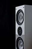 Tower Speaker Isolated. High-end silver-gray tower speaker isolated on a black background stock image