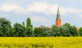 Tower of St. Martin in Nienburg. On the river Weser royalty free stock images