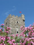 Tower of St. Peter Castle in Bodrum, Turkey Stock Photo