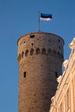 Tower Tallin. Old Tallinn, Estonia, roof and tower Stock Image