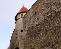 Tower Tallinn. Red tile roof, fortification, blue sky Stock Photo