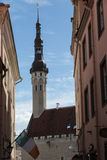 Tower of Tallinn`s Town Hall Royalty Free Stock Photography