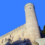 Tower of Toompea Castle Royalty Free Stock Image