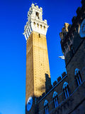 Tower Torre del Mangia .Siena.Italy Royalty Free Stock Photos