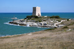 Tower and trabucco close to Vieste, Gargano. Antico trabucco on the coast close to Vieste, Gargano Royalty Free Stock Photos