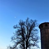 Tower, tree, moon, fairytale and altitude in Turin city, Italy. Turin city in Italy, tower, tree, altitude, elevation, blue sky, ancient architecture, historic stock photo