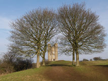 The Tower among the trees - United Kingdom Stock Image